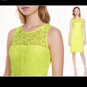 Jcrew collection citrus lace sheath dress 2